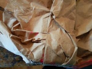 Paper Bag/ Toilet Paper Tube Turkey