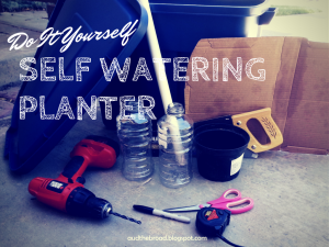 DIY: Self Watering Planter