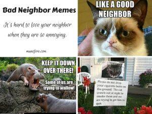 Neighbor Humor