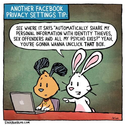 FB-id thieves