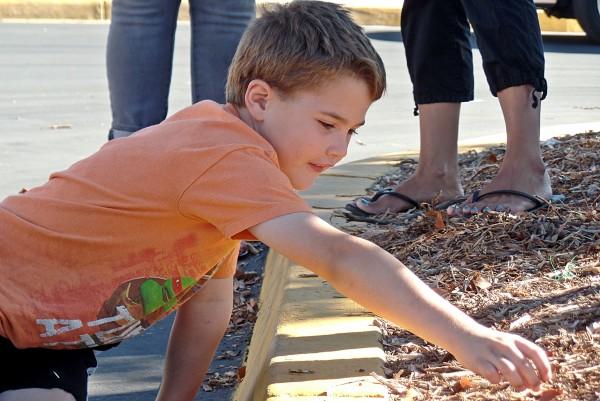 boy playing with mulch