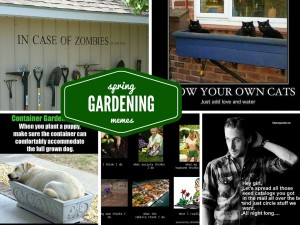 Funny Gardening Memes Just in Time for Spring Planting