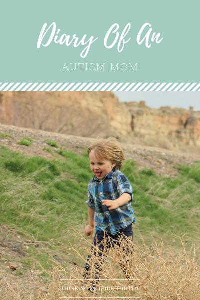 diary-of-an-autism-mom