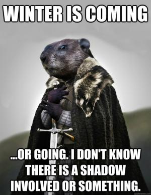 Cute and Funny Groundhog memes - celebrate Groundhog Day with these adorable groundhog memes. funny memes, cute animal memes.