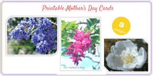 Free Printable Mother's Day Cards (save the money for her gift!)