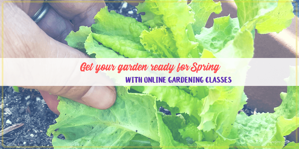 Get the Most From Your Garden with Online Gardening Classes